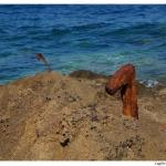 Lo sbocco a mare