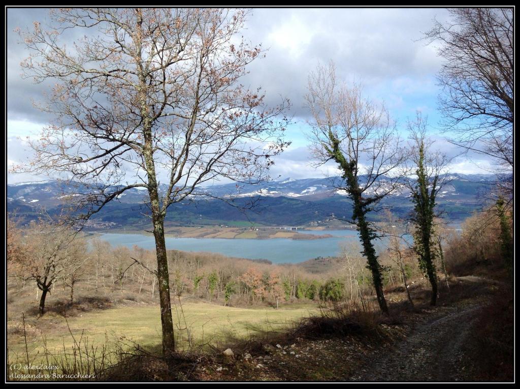 2012-02-03-mugello_ipad-2