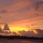maldives-050