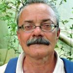 Stefano Sansavini